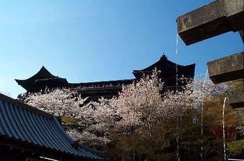 kiyomizu-sakura.jpg
