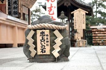 koiishi_500.jpg